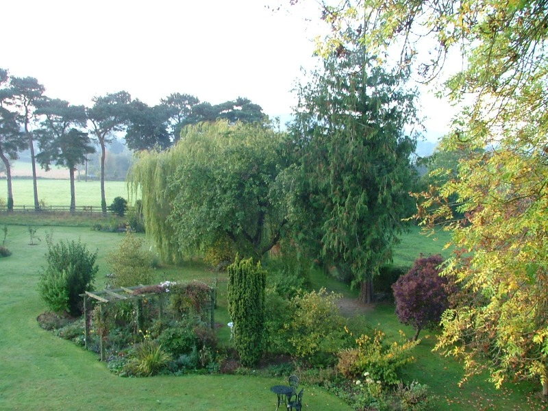 Garden from the Longtown room